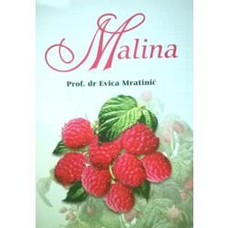 Malina - dr Evica Mratinić