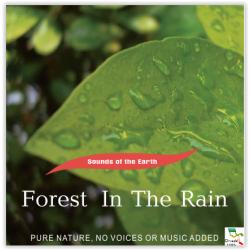 Kišna šuma
