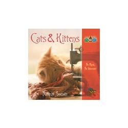 Mačke & Mačići